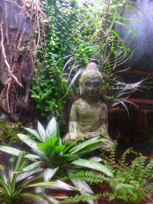 Buddha statue at Niagara Falls Bird Sanctuary